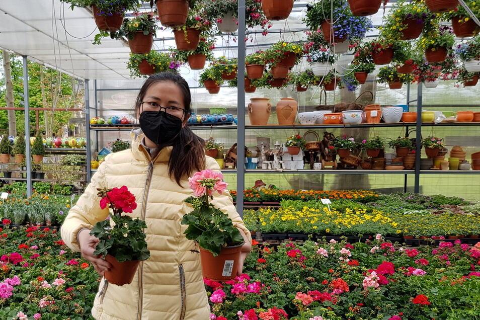 Nguyen Oanh, die in einem Asia-Markt in Rožany arbeitet, hat nach der überraschenden Grenzöffnung schnell reagiert und sich mit frischen Blumen eingedeckt.