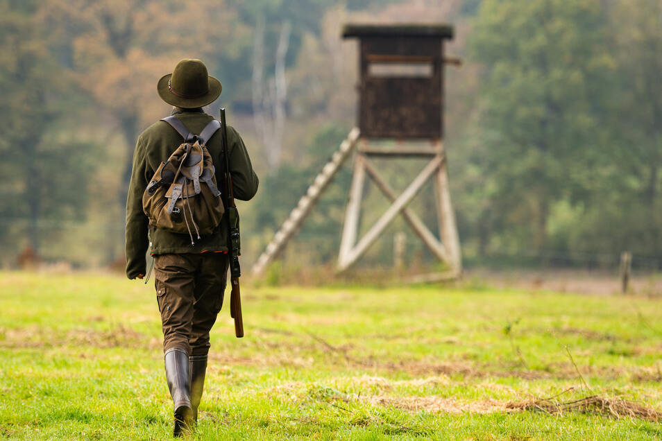 Wie auf diesem Foto einer Jägerin aus Niedersachsen, arbeiten auch die Dresdner Jäger bei der Treibjagd von Hochsitzen aus.