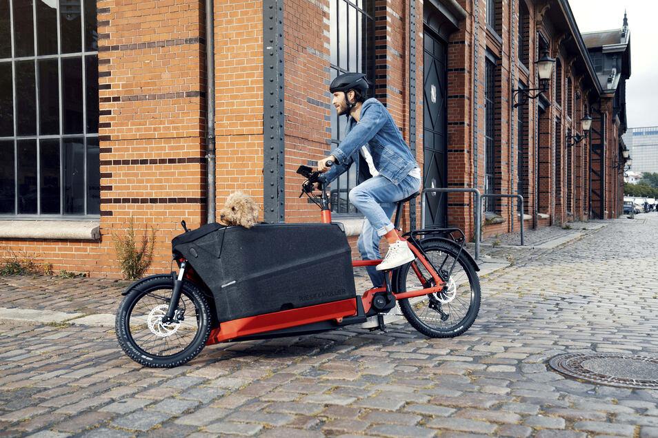 Lastenräder werden auch in Sachsens Städten immer populärer. Wem das Fahren mit reiner Pedalkraft zu anstrengend ist, der kann sich elektrisch unterstützen lassen. Aber das hat seinen Preis.