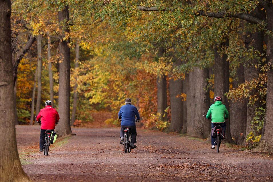Diese drei Männer auf Fahrradtour in Moritzburg halten ausreichend Abstand.