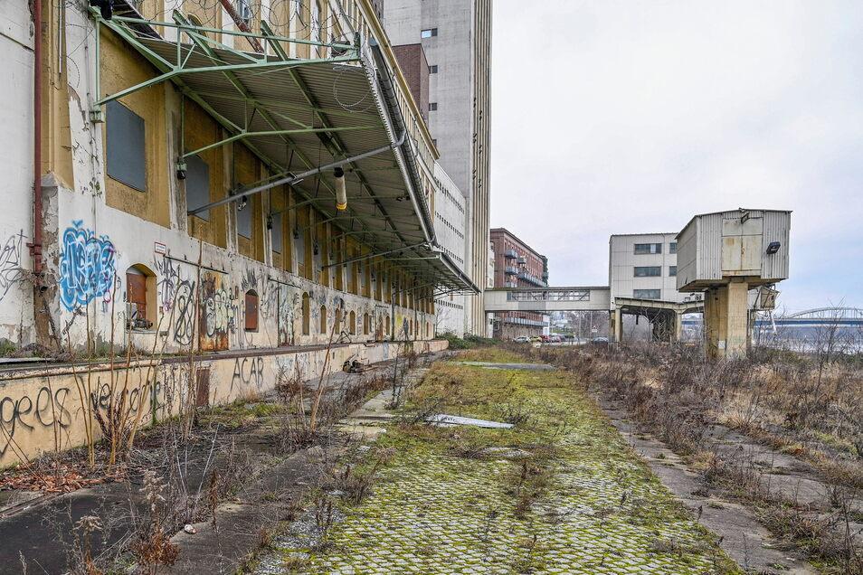Die Gebäude rechts sollen fallen, dann könnte hier entlang der Elberadweg führen - auch ohne einem Erfolg bei der aktuellen Bewerbung um Fördergeld.