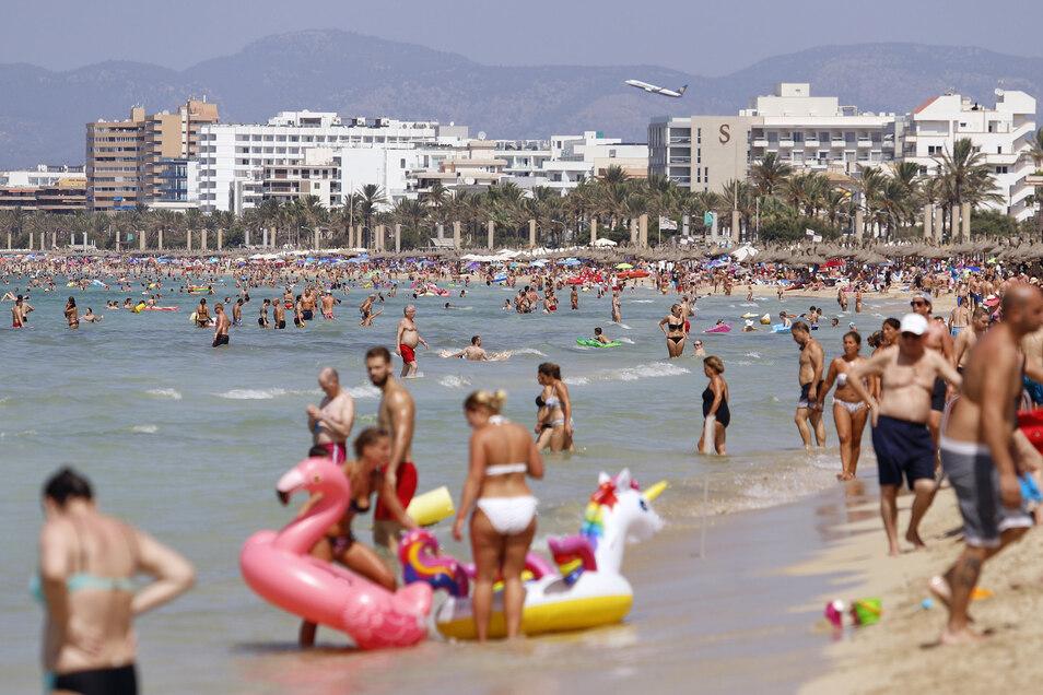 Normalerweise tummeln sich die Touristen am Strand von El Arenal.