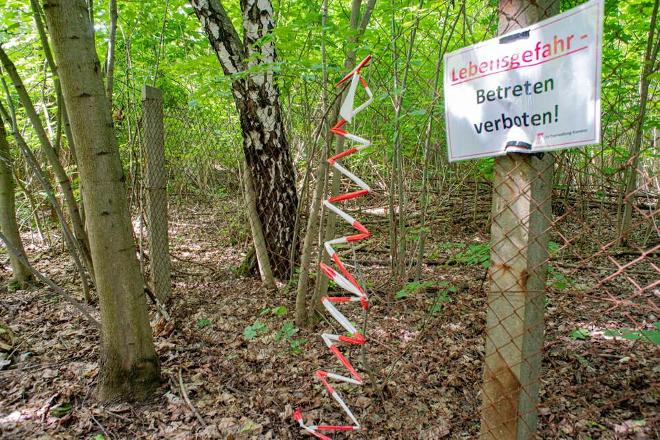 Dieser Anblick am Steinbruch Sparmann in Kamenz sorgt seit Jahren für Ärger. Doch auf dem verwilderten Gelände wird sich bald etwas tun.
