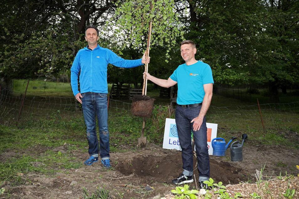Zum Wahlkampfauftakt pflanzte Gunnar Hoffmann gemeinsam mit dem amtierenden Oberbürgermeister Marco Müller (CDU) einen Baum. Aufforsten will Hoffmann auch, wenn er gewählt werden sollte. Sein Ziel: 10.000 neue Bäume.