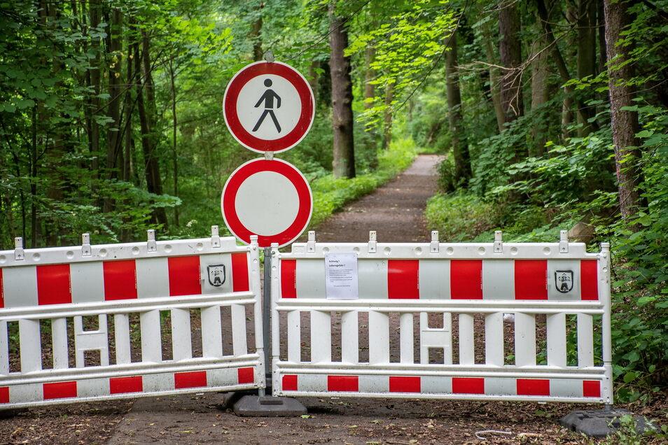 Für den Waldumbau müssen immer wieder Wanderwege gesperrt werden - wie der von Waldheim nach Rauschental.