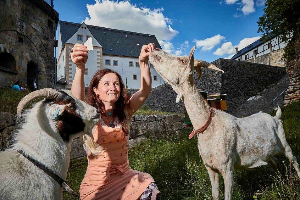 Museumspädagogin Maria Pretzschner mit den beiden Ziegen auf der Festung Königstein.