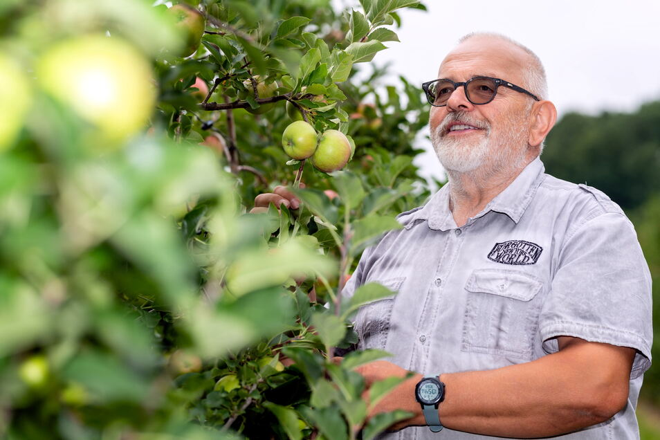 Entspannt beobachtet der Schirgiswalder Obstbauer Bernhard Stolle in dieser Saison seine Äpfel: Das Jahr war gut, und im kommenden kümmert sich ein anderer um den Betrieb der Plantage.