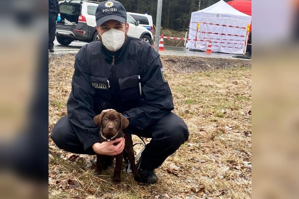 Ein Bundespolizist mit einem der Labrador-Welpen.