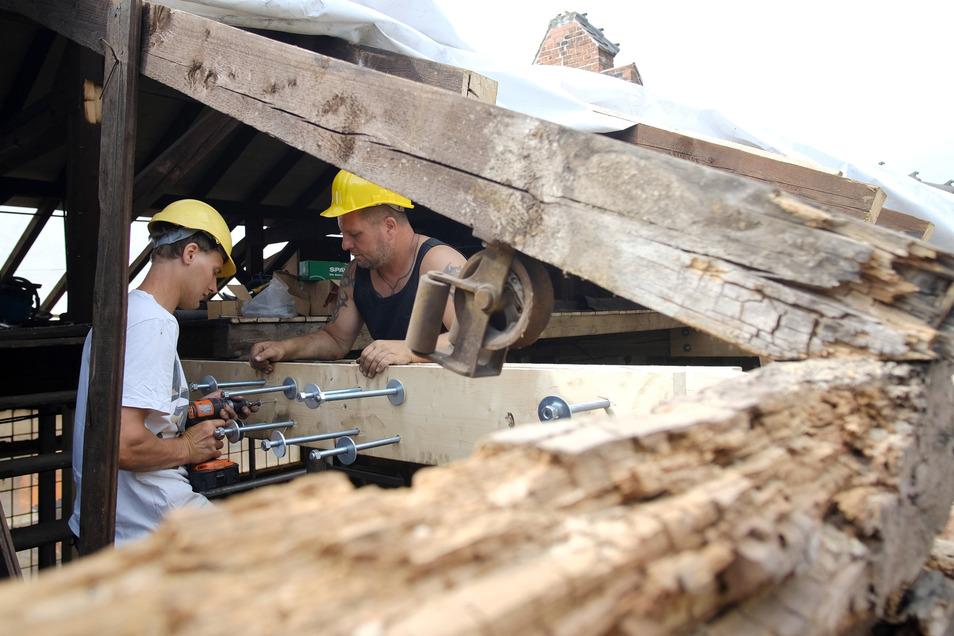 Mitarbeiter der Firma Riße sanierten das gesamte Dach des Bauhofes Meißen, der vom Schwamm befallen war.