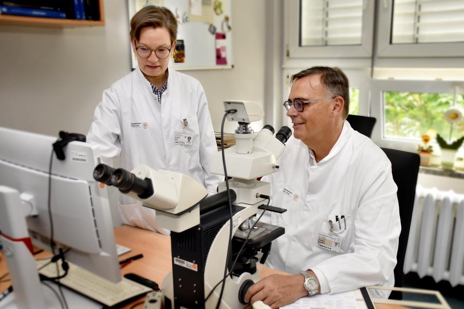 Krebszellen aufwendig selbst zu zählen, gehörte für Daniela Aust und Gustavo Baretton vom Institut für Pathologie der Uniklinik Dresden lange zum Alltag. Jetzt hilft ihnen KI.