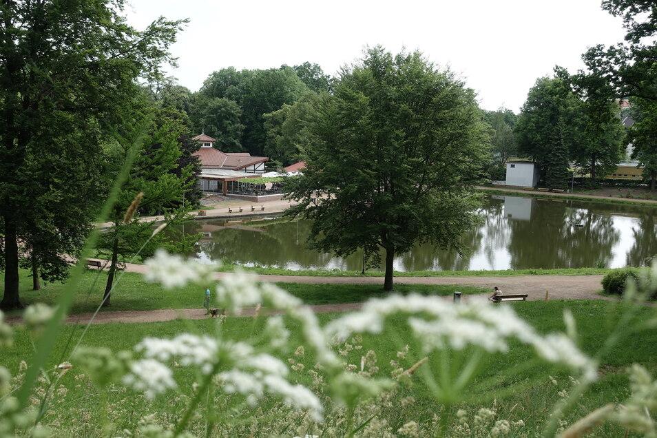 Der Bürgergarten in Döbeln soll saniert werden.