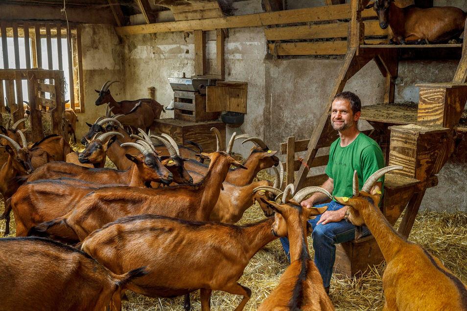 """""""Der Herr der Ziegen"""": Der Fotograf Eric Münch gewinnt mit diesem Porträt eines Landwirts inmitten einer Schar Ziegen."""