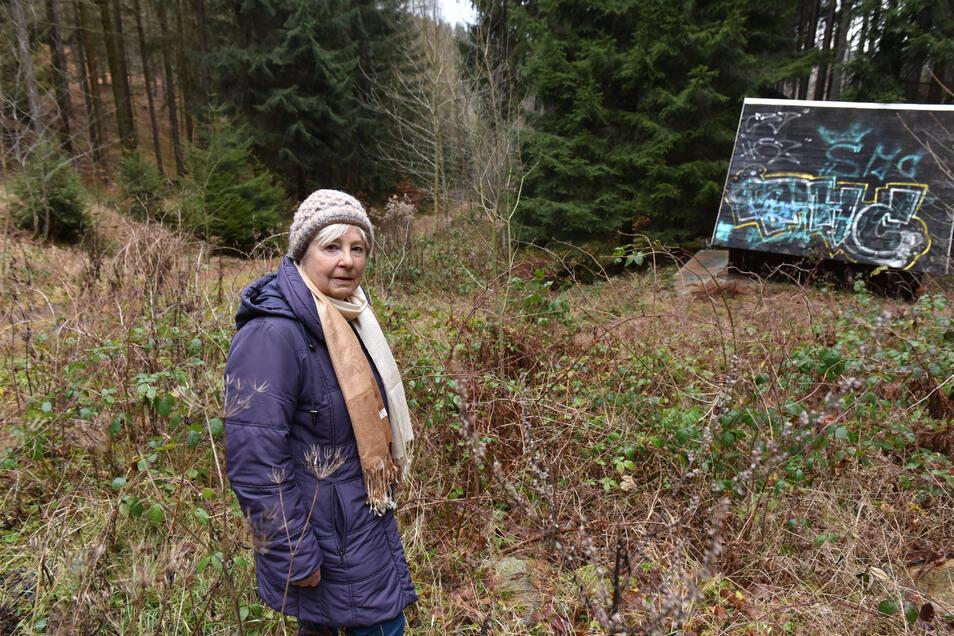 Hier steht Brigitte Rössel am zugewachsenen Bett des Hessenbachs oberhalb von Schmiedeberg. Das ist einer der kleineren Bäche in Dippoldiswalde, wo etwas gemacht werden müsste.