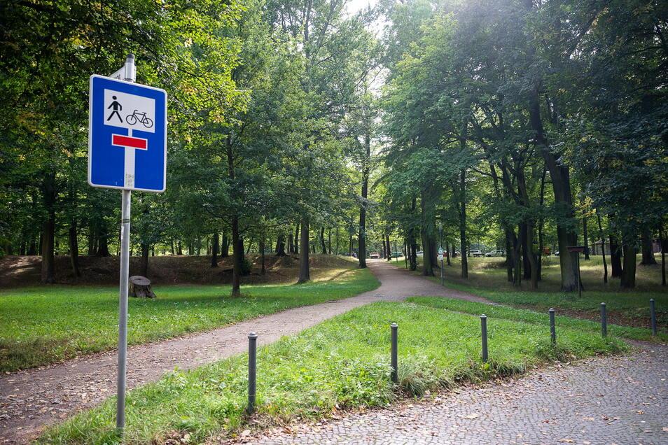 Dieser Eingang zum Stadtpark an der Joliot-Curie-Straße/Ecke Lindenweg soll dieses Jahr aufgewertet und saniert werden.