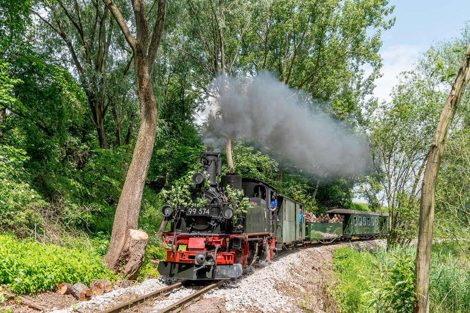 Oben ohne, also im Aussichtswagen, können Eisenbahnfans am Wochenende das Döllnitztal entdecken.