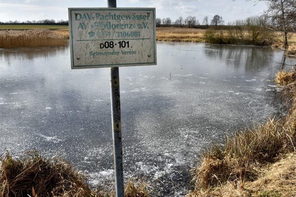 Die Torflöcher bei Nasseböhla sind zwar fast flächendeckend zugefroren, aber zu klein zum Eislaufen. Außerdem sind es Pachtgewässer der Angler.