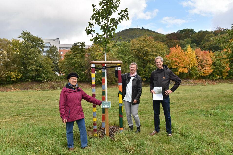 Susanne Brand vom Umweltzentrum Freital (links) übergibt Ellen Werner und Sebastian Strebe von der Firma Dr. Born - Dr. Ermel die Urkunde für den gespendeten Vogelkirschbaum im Park hinter dem Neumarkt.