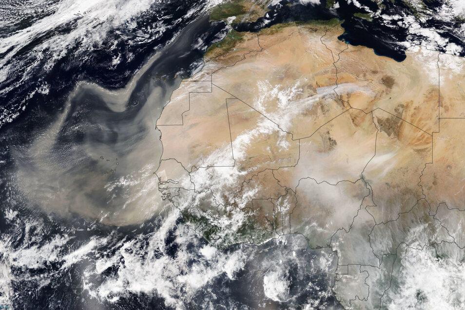 Vor fünf Tagen machte sich diese Staubwolke von der Sahara auf den Weg nach Europa, im Satellitenbild westlich von Afrika zu sehen. Seit Montag ist der saharastaub bei uns und dimmt das Licht.