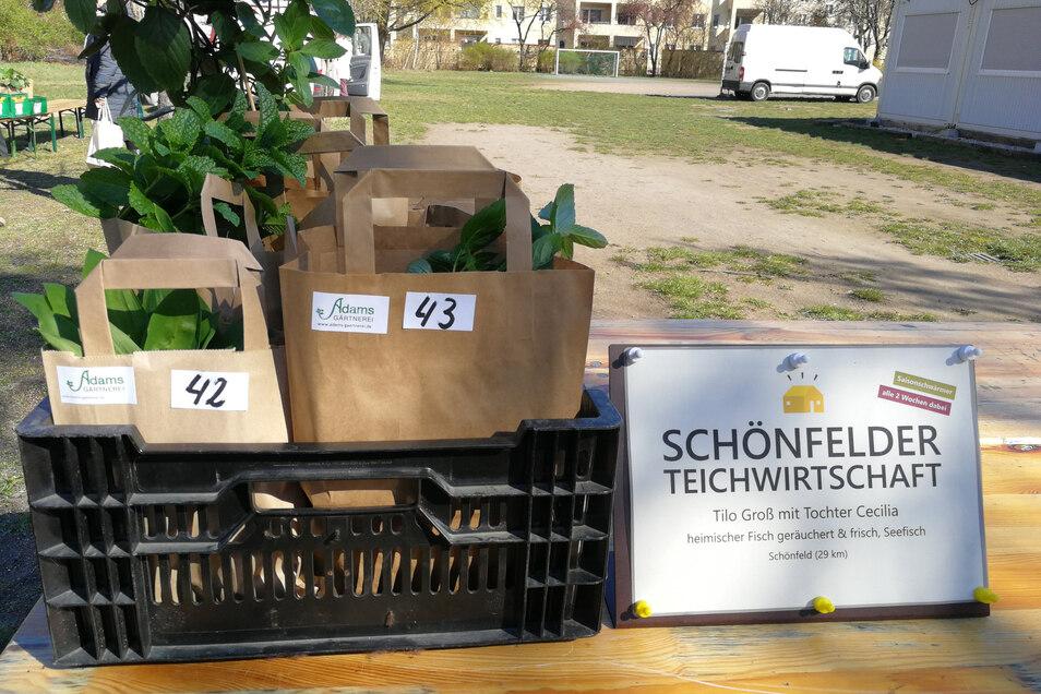 Auf dem Hinterhof der Montessori-Schule in Dresden-Striesen warten Plastikkisten darauf, abgeholt und ausgeliefert zu werden. Der Fisch-Verkäufer aus Schönfeld und der Fleischverkäufer aus Thiendorf wechseln sich ab, damit nicht beide herfahren müssen. St
