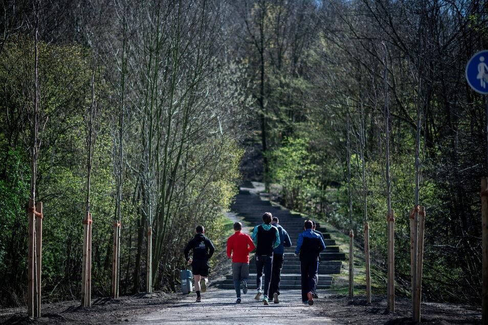 Joggen durch den Wald: Seit Beginn der Corona-Krise hält sich mehr als die Hälfte der Jugendlichen nach eigener Einschätzung häufiger in der Natur auf.