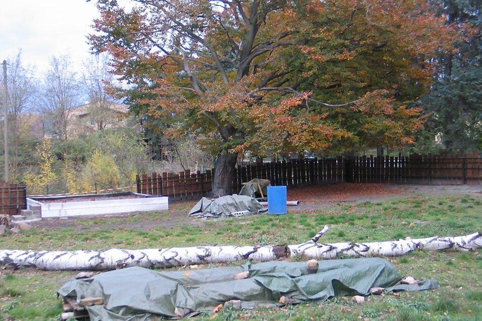 Im ehemaligen Zebragehege entsteht ein begehbares Gehege für die Alpakas.