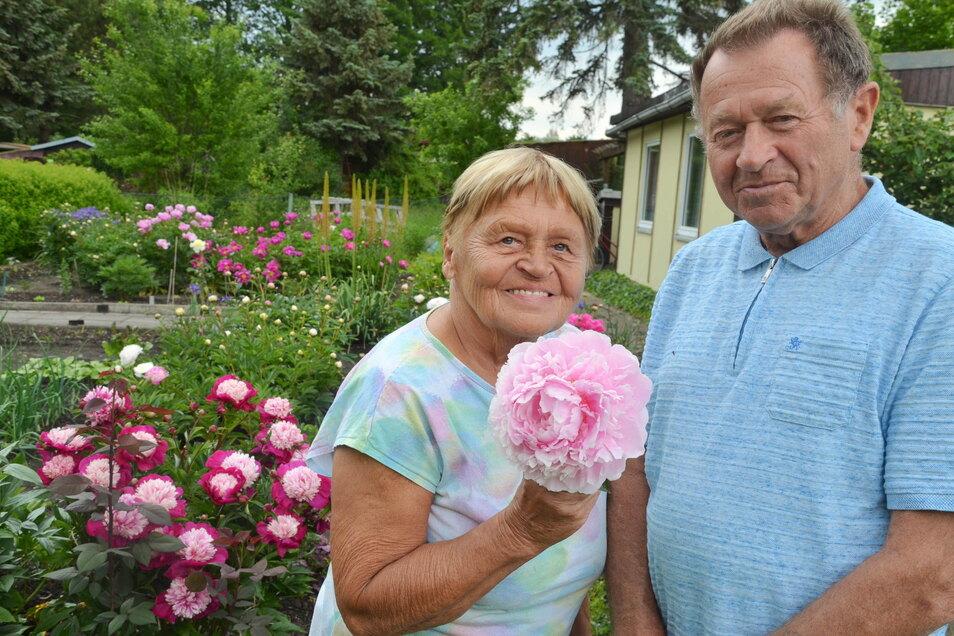 Marita und Hans Kuhnert erfreuen sich täglich an der Blütenpracht in ihrem Garten.