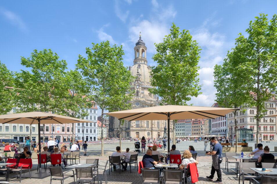 Touristen kehren auf den Dresdner Neumarkt zurück und lassen sich bewirten. Ein Mann konnte nun allerdings nicht zahlen und wurde rabiat.