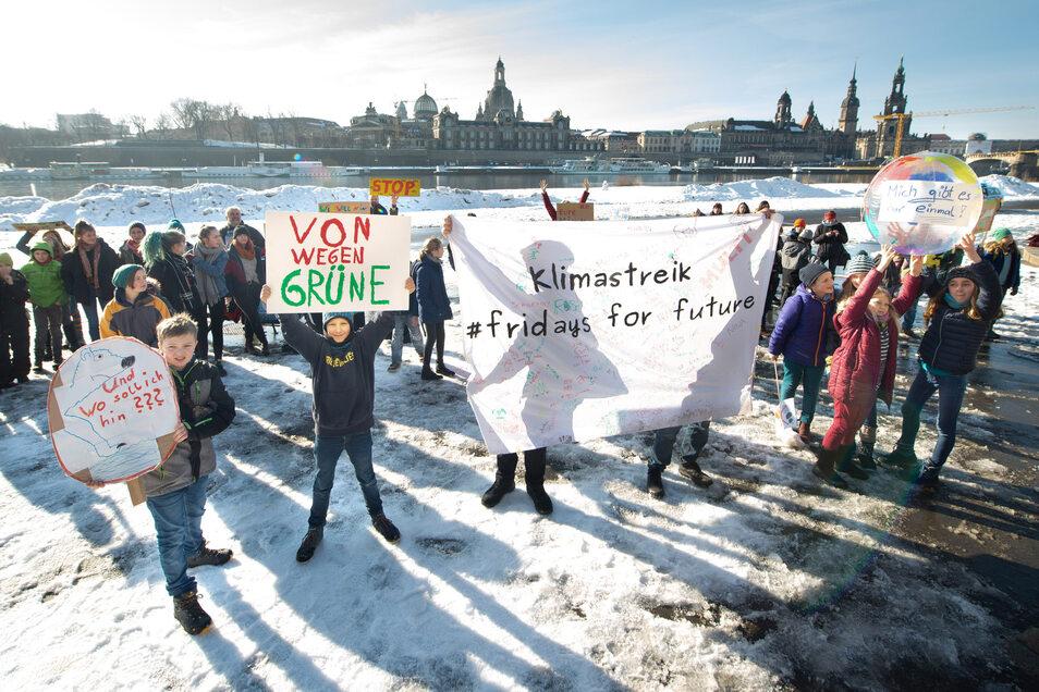 Friday for Future: Auch in Dresden demonstrieren Schüler für den Umweltschutz – jüngst am Königsufer.