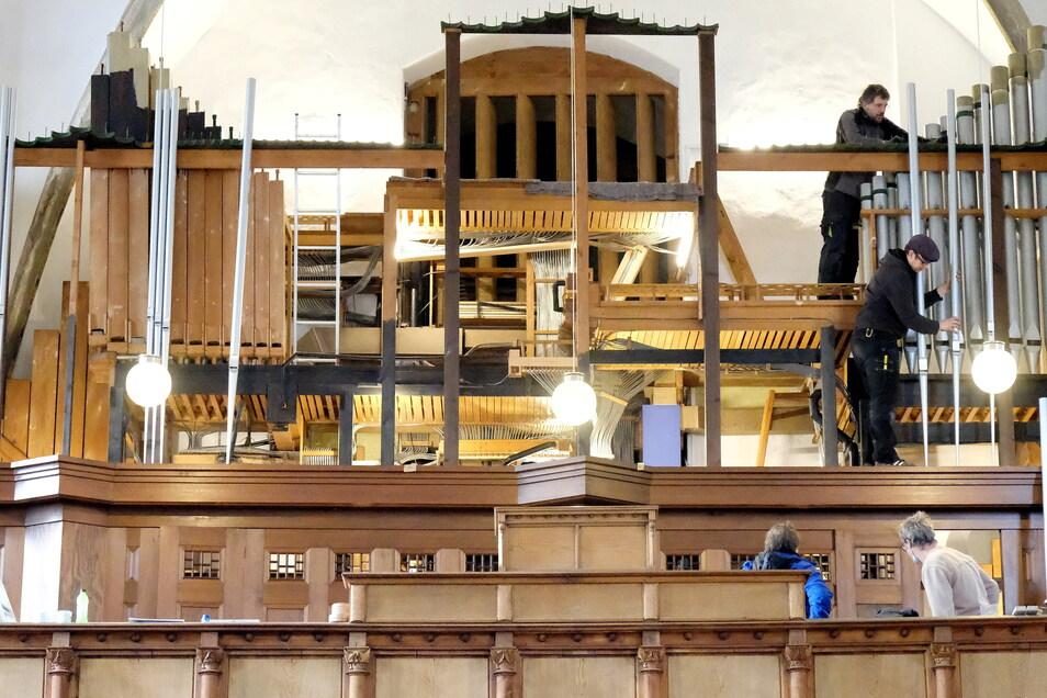 """Die restaurierte Orgel wurde im Februar wieder in die Frauenkirche Meißen eingebaut. Zu Pfingsten war das Mammutprojekt beendet: """"Ein ganz besonderer Moment!"""""""