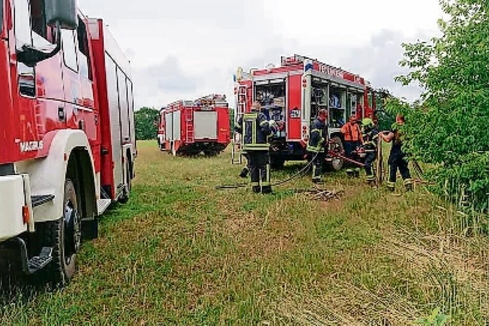 Zu einem Brand im Glaubitzer Wald rückten am Mittwoch acht Feuerwehr-Fahrzeuge aus.