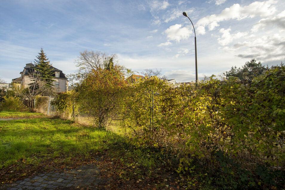 Nur wenn die Stadt den Grünstreifen an der Ostseite des Turnerwegs erwirbt, kann sie die Grundstücke hinter dem Bauzaun entwickeln.