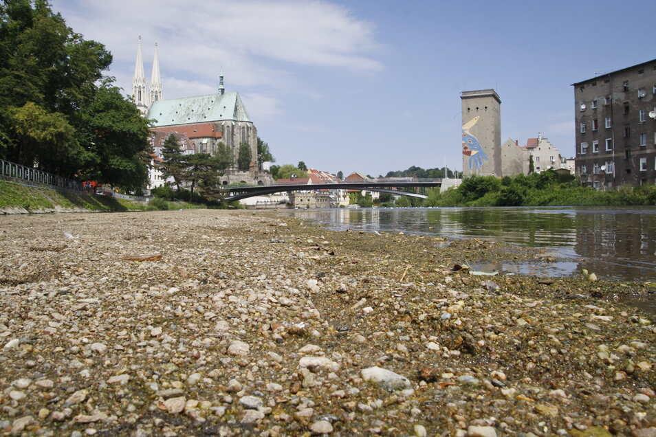 In trockenen Sommern wird die Neiße in Görlitz immer schmaler und flacher. Aber sie trocknet nicht aus.