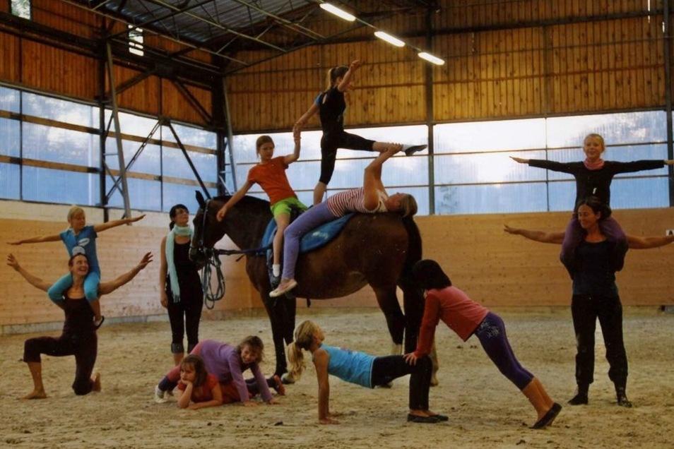 Pferdesport wird bei Wunder Land groß geschrieben. Bei vielen Kindern ist Voltigieren beliebt.