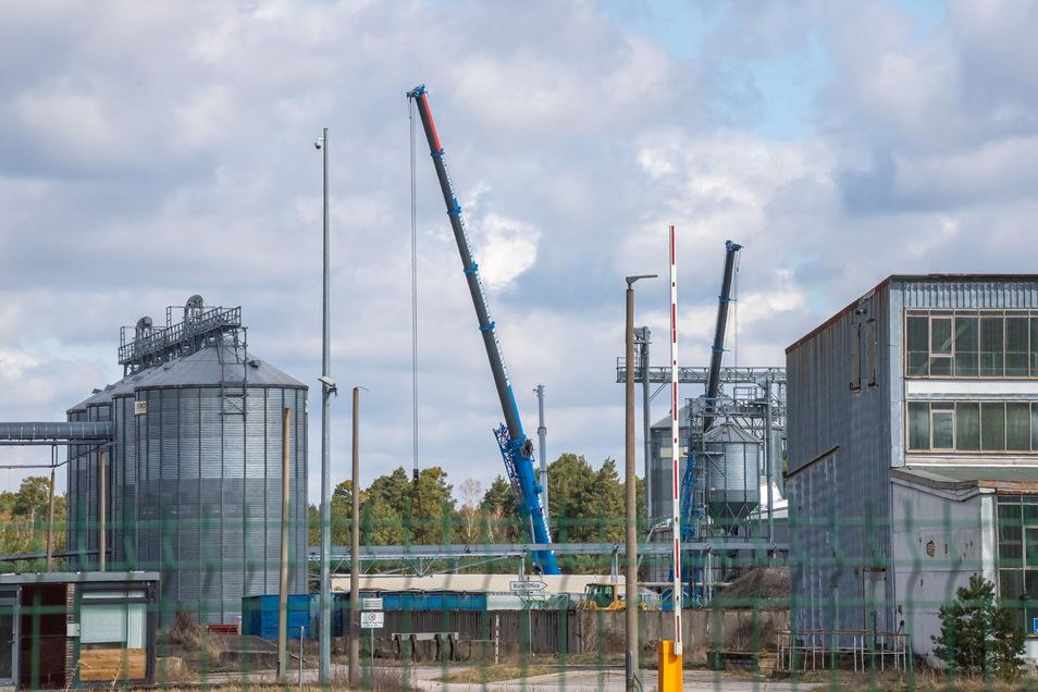 Auf dem Gelände der Naturfaserstoffe Rothenburg GmbH & Co. KG werden zusätzliche Hallen errichtet. Hier hatte früher der Pellethersteller Eko Energy seinen Sitz.