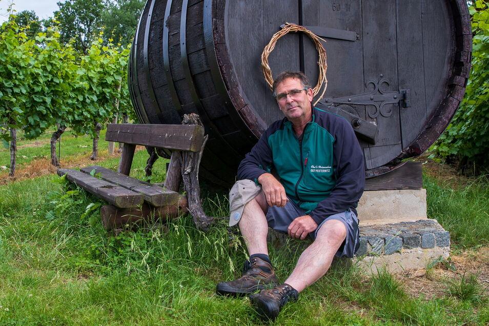 Lars Folde in seinem Weinberg. Als junger Spund hat er die Anlage noch zu DDR-Zeiten mit aufgebaut. Heute erntet er als Chef von Gut Pesterwitz die Früchte.