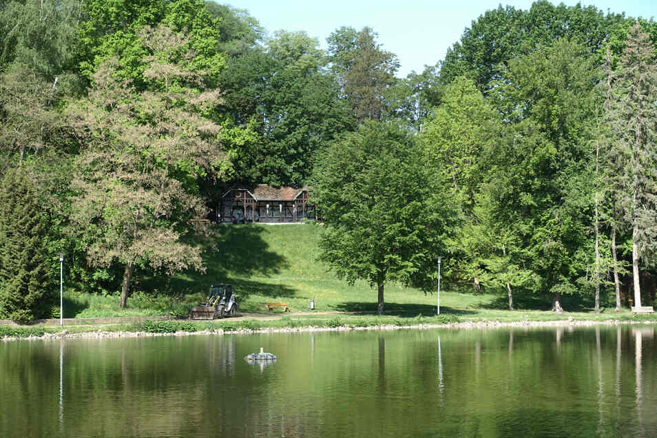 Blick über den oberen Teich zum alten Musikpavillon: Ein Baum, vor über 20 Jahren an der falschen Stelle gepflanzt, verstellt die Sichtachse.