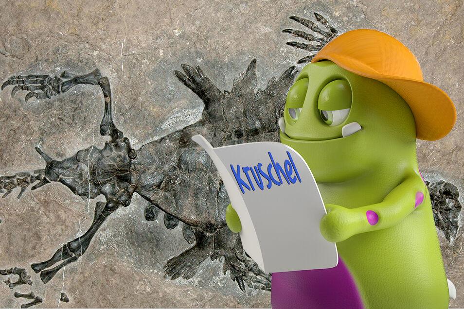 Fossilien sind Überreste versteinerter Tiere oder Pflanzen, die vor mindestens 10.000 Jahren gelebt haben.