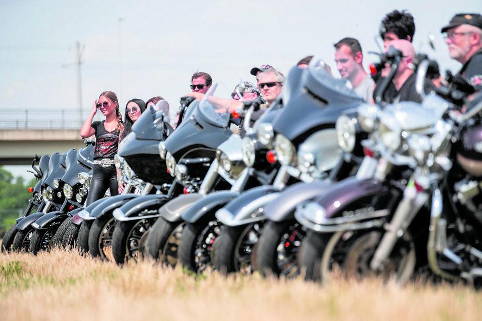 Schwarz ist ihre Lieblingsfahrer, zeigen Mitglieder des Harley-Chapters aus Dresden im Ostragehege.
