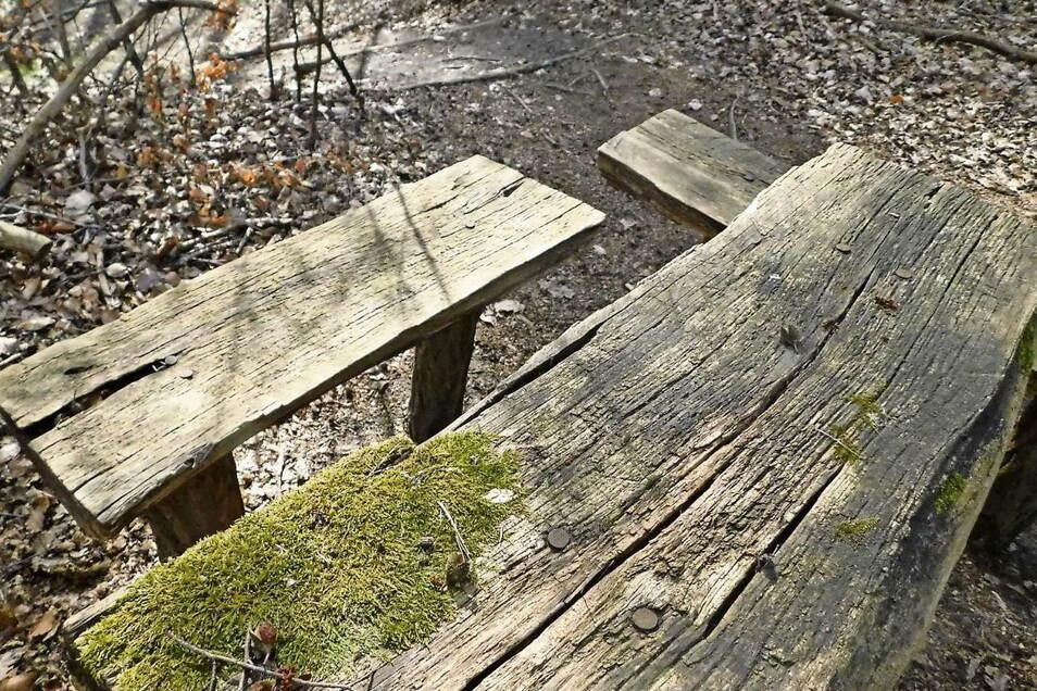 Rastplätze, aber auch Brücken, Stege, Geländer müssen dringend saniert werden. Der Auftrag dafür ist vergeben.
