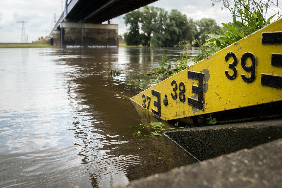 Nach den beiden Hochwassern sind viele Dresdner für das Thema sensibilisiert.