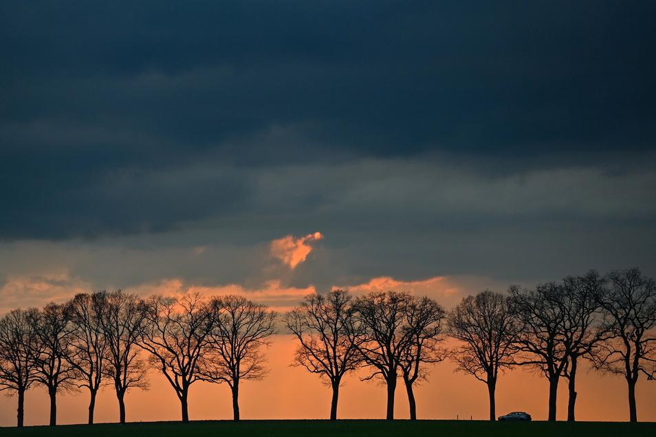 Dunkle Gewitterwolken am Himmel: Der Mittwoch ist in weiten Teilen Sachsens ungemütlich.