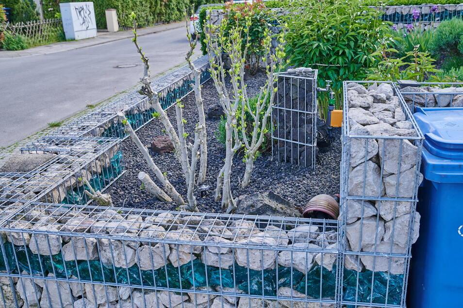Schottergärten heizen sich vor allem im Sommer stark auf.