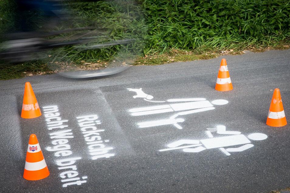 Mehr Rücksichtnahme fordern die neuen Piktogramme auf dem Elberadweg. Die zeigte mancher Radfahrer am Mittwoch aber nicht: Einige fuhren sogar noch über die frische Farbe.