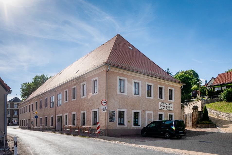 Das Pilzmuseum zeigt Exponate von Reiner Helwig. Zu sehen sind diese im Erbgericht Reinhardtsgrimma.
