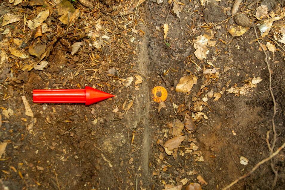 Die Inventurpunkte sind durch Transponder, die Pinokios (links), im Boden markiert. Mit GPS und Detektor lassen sie sich aufspüren.