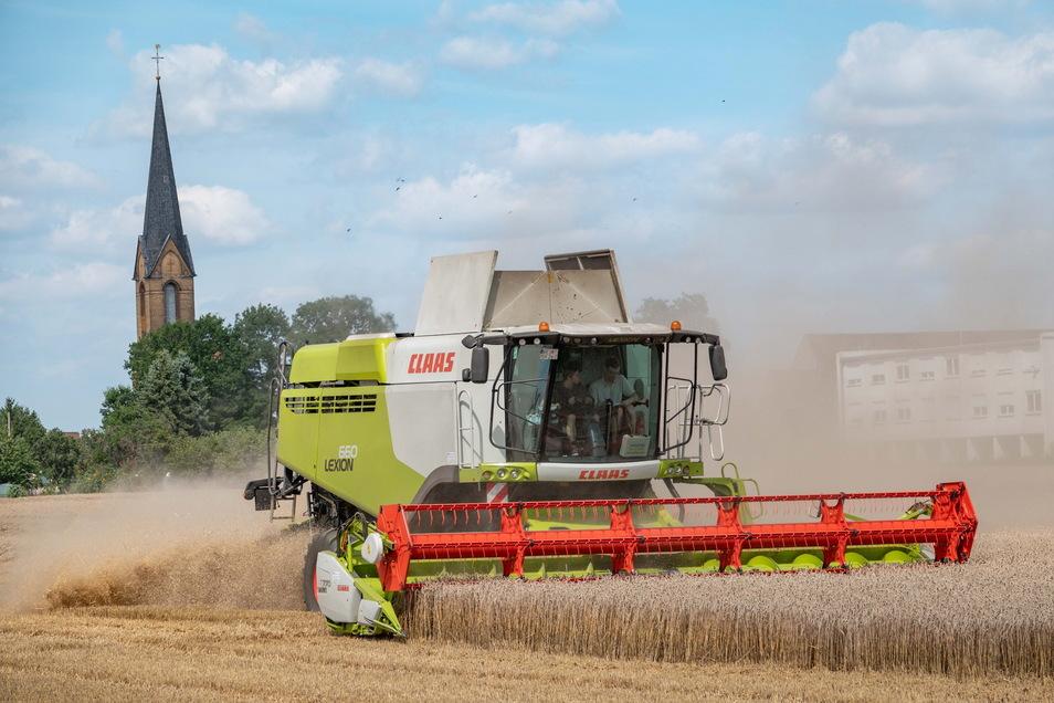 Ernte am Dorfrand: Die Felder reichen in Kreinitz bis an die Wohngrundstücke ran. Da geht es bei der Ernte schon mal staubig zu.