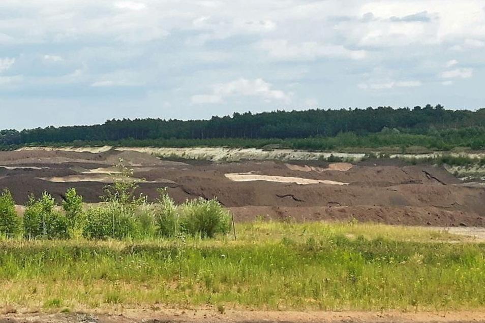Die Kippe vom Tagebau Reichwalde wird zwischen 2025 und 2027 rekultiviert.