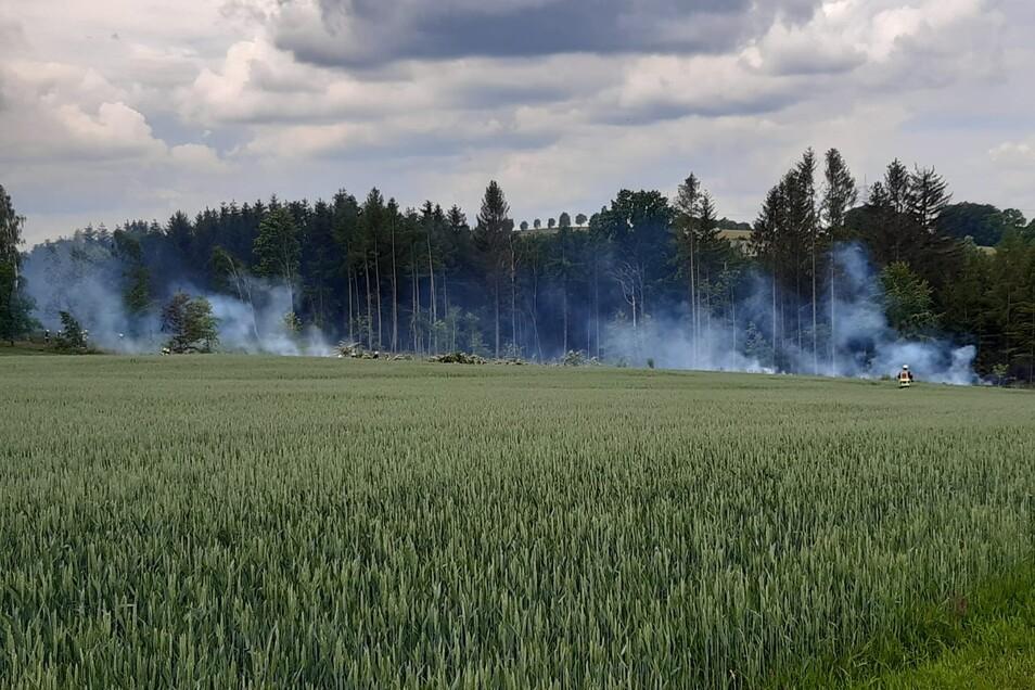 Mehrere Feuer hatte ein Anlieger am Waldrand angezündet, um Borkenkäferholz zu verbrennen. Am Ende waren sieben Feuerwehren im Einsatz.