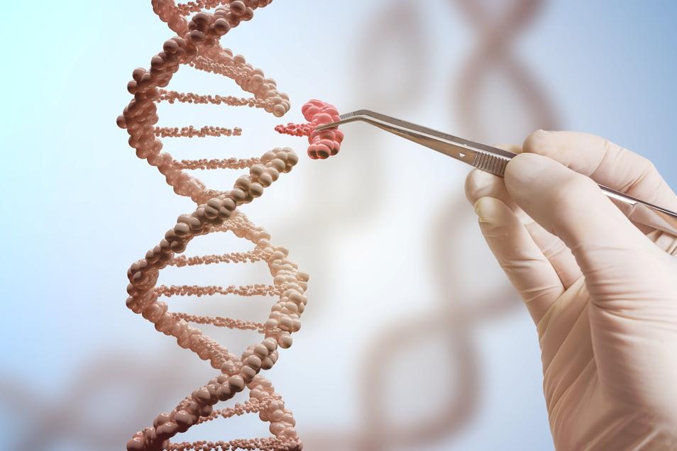 Mit der Genscheren-Technologie können bestimmte Sequenzen der DNA repariert und Erbkrankheiten geheilt werden.