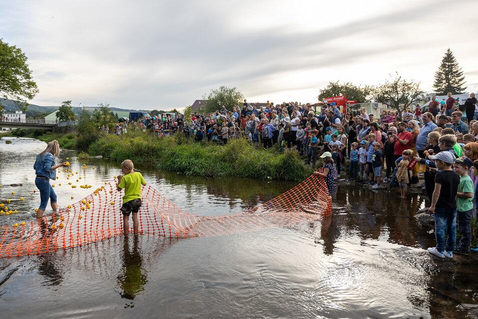 Zum Entenrennen wurden Dutzende Gummi-Enten auf die Weißeritz gesetzt.